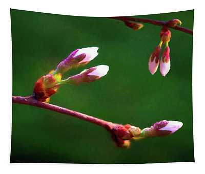 Spring Buds - Weeping Cherry Tree Tapestry