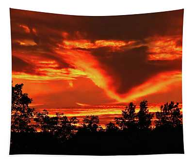 Springport, Michigan Sunset 4289 Tapestry