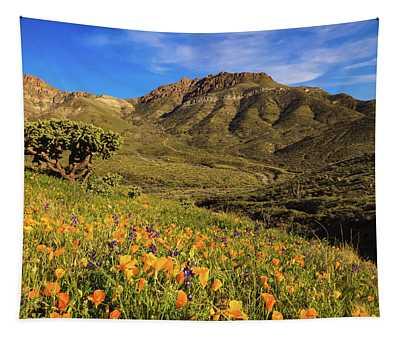 Springtime In The Desert Southwest Tapestry