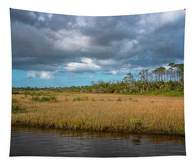 Spruce Creek Park Tapestry