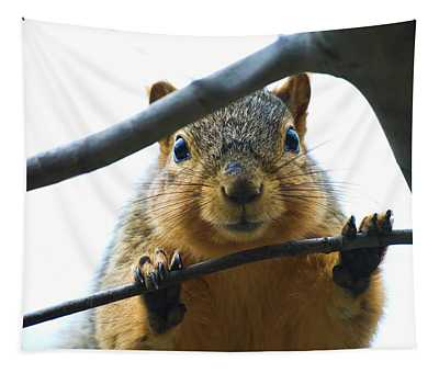 Spying Fox Squirrel Tapestry