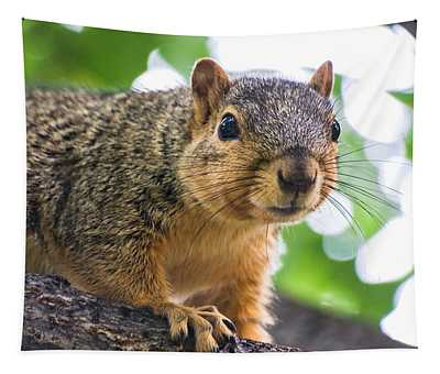 Squirrel Close Up Tapestry
