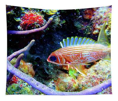 Squirrel Fish Tapestry