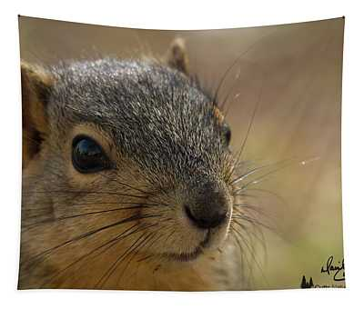 Squirrel Portrait Tapestry