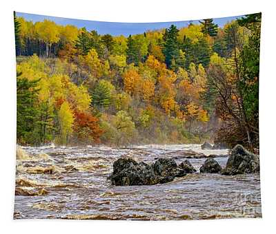 St. Louis River At Jay Cooke Tapestry