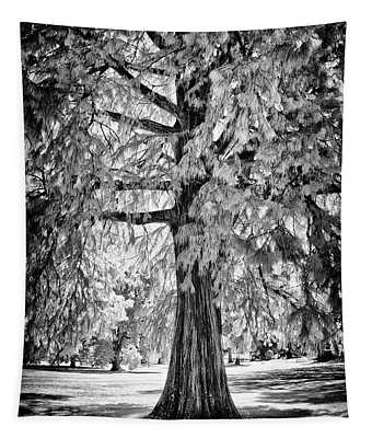 Standing Tall Old Tree - I R Tapestry