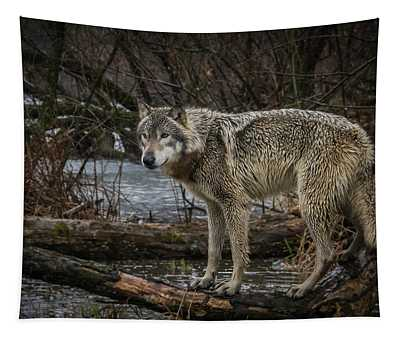 Stay Dry Tapestry