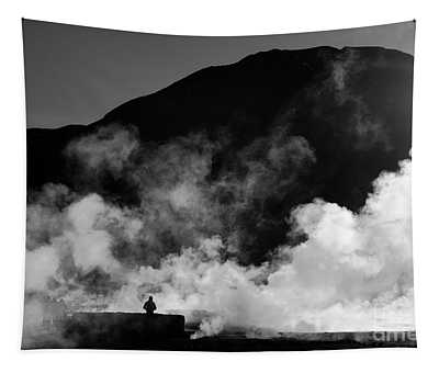 Steaming Solitude El Tatio Geysers Chile Tapestry