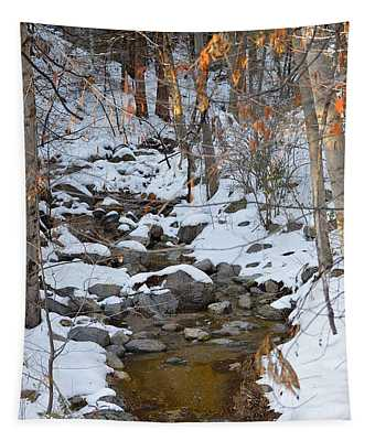 Strawberry Creek In Winter - Idyllwild Tapestry