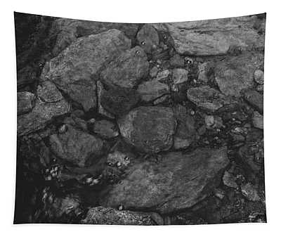 Stream Bed Black And White Tapestry