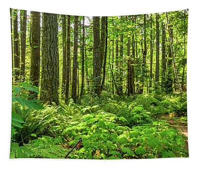 Stroll Among The Trees Tapestry