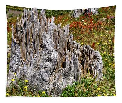 Stumps Of Trees Shattered In The 1980 Eruption Tapestry