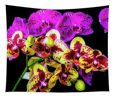 Stunning Purple Yellow Orchids Tapestry