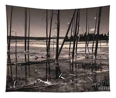 Tapestry featuring the photograph Sulfur Field by Mae Wertz