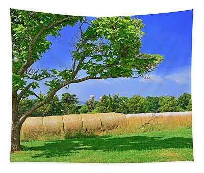 Summer Bales Of Rolled Hay Tapestry