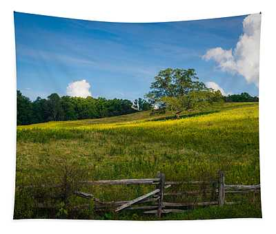 Blue Ridge Parkway - Summer Fields Of Yellow - Lone Tree Tapestry
