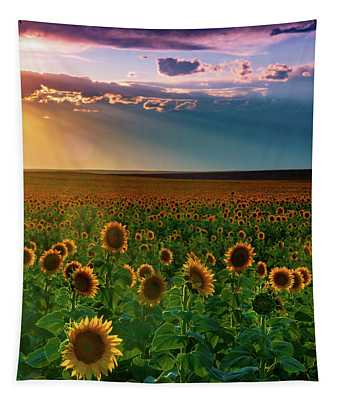 Tapestry featuring the photograph Summer Season by John De Bord