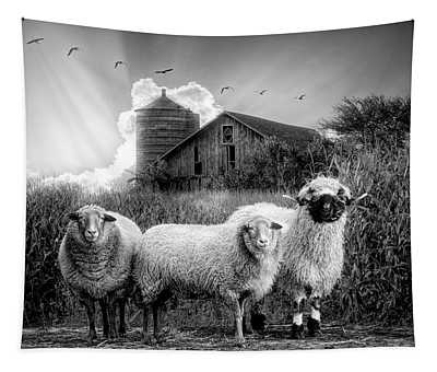 Summer Sheep In Black And White Tapestry