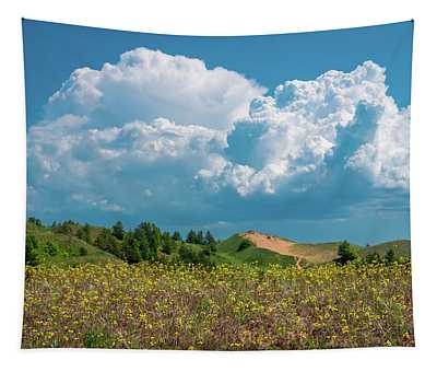 Summer Storm Over The Dunes Tapestry