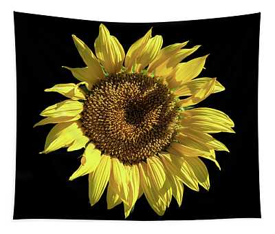 Sunflower On Black Tapestry