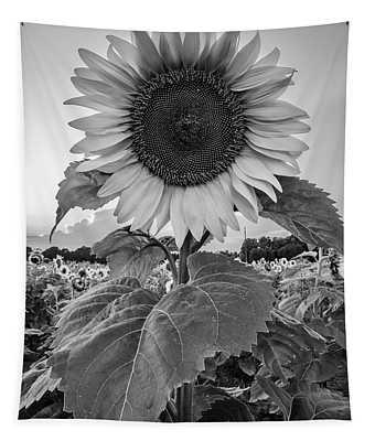 Sunflowers 10 Tapestry