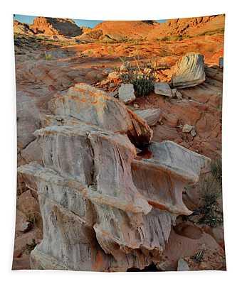 Sunlight Starts To Light Ornate Rock Tapestry