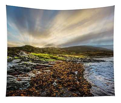 Sunrays At Dawn Along The Coast Tapestry