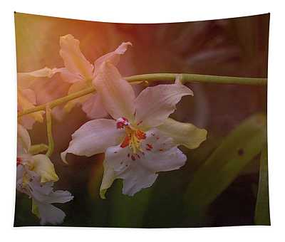 Sunrise Orchid Tapestry