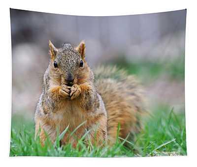 Super Cute Fox Squirrel Tapestry