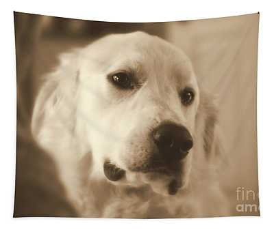 Tapestry featuring the photograph Sweet Boy by Patti Whitten