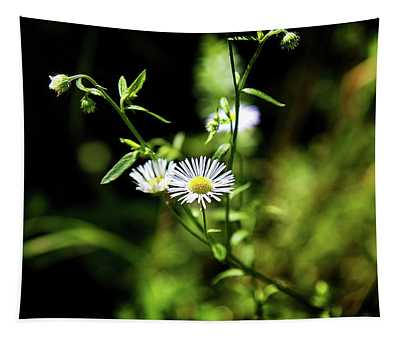 Sweet Daisy Tapestry