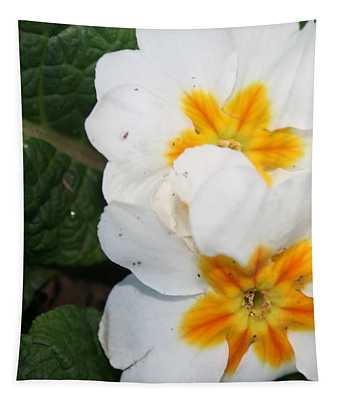 Sweet Primrose Tapestry