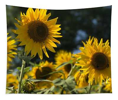 Sweet Sunflowers Tapestry