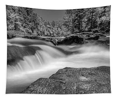 Sweetwater Creek Infrared Bw Tapestry