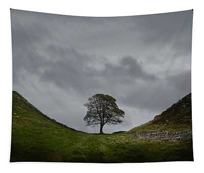 Sycamore Gap Tapestry