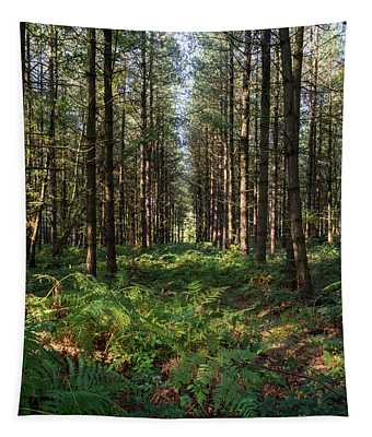 Tall Trees In Sherwood Forest Tapestry