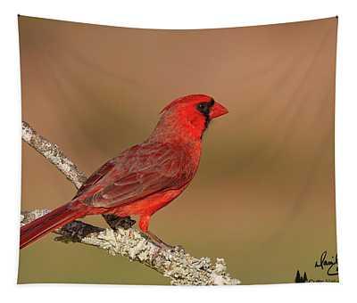 Texas Cardinal Tapestry