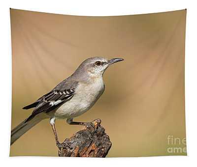 Texas State Bird Tapestry