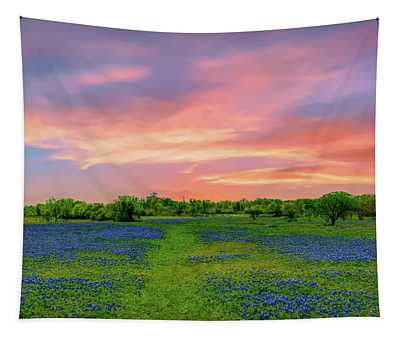 Texas State Flower, Bluebonnets Tapestry