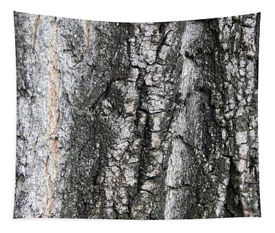 Texture Of The Bark Of An Old Fruit Tree Tapestry