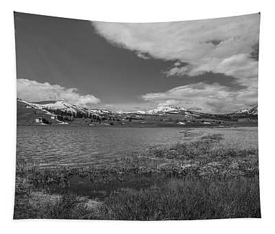Tha Gallitin Mountains In Black And White Tapestry