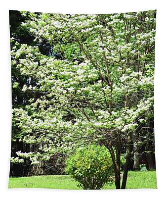 The Beautiful Dogwood  Tree Tapestry