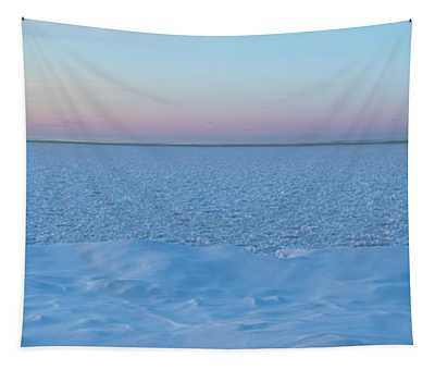 The Blues Of Winter Tapestry