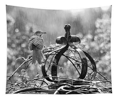 The Brown Thrasher In Black And White Tapestry