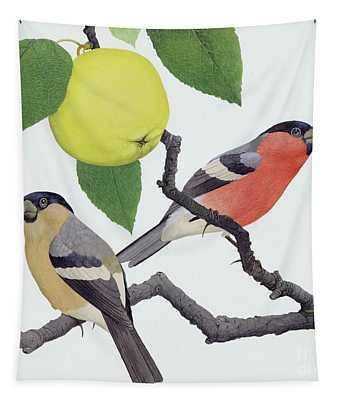 The Bullfinch Tapestry