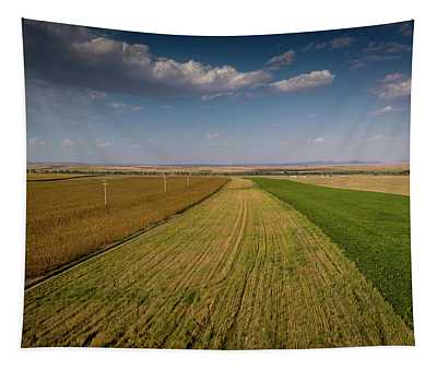 The Colored Fields Tapestry