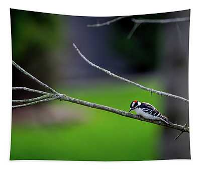 The Downey Woodpecker Tapestry
