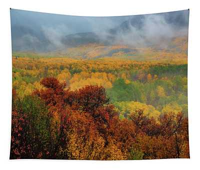 Tapestry featuring the photograph The Feeling Of Fall by John De Bord