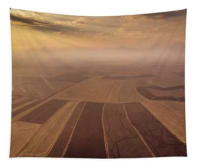 The Fog Tapestry