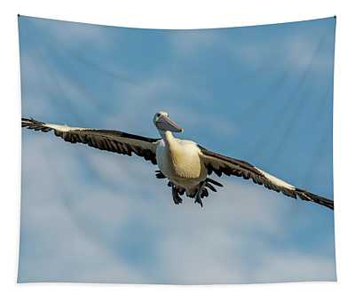 The Glider Tapestry